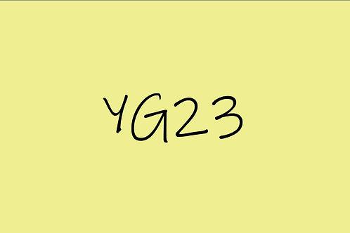 Copic Sketch YG23