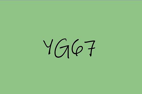 Copic Sketch YG67