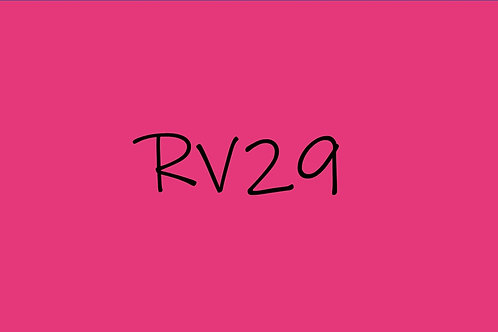 Copic CIao RV29