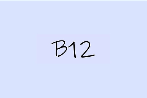 Copic Sketch B12