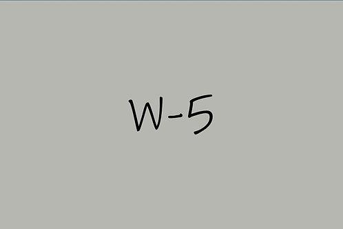 Copic Ciao W-5