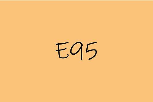 Copic Sketch E95