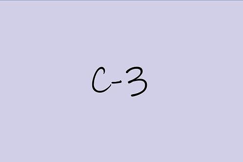 Copic CIao C-3