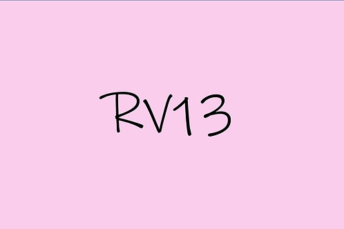 Copic Ciao RV13