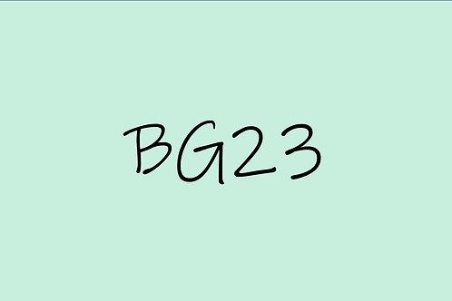 Copic Ciao BG23