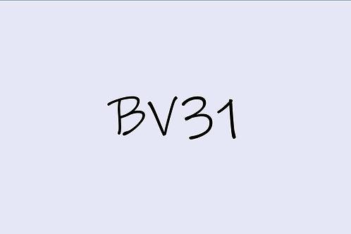 Copic Ciao BV31