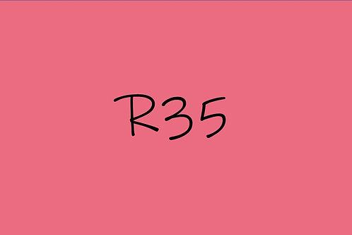 Copic Sketch R35