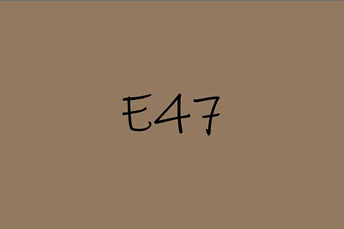 Copic CIao E47