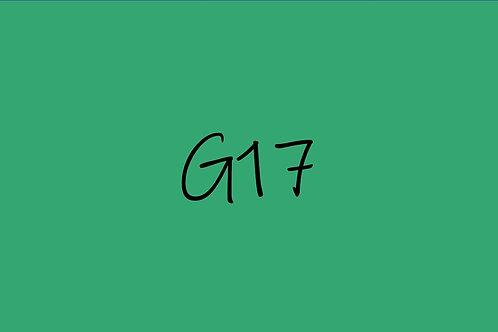 Copic Ciao G17