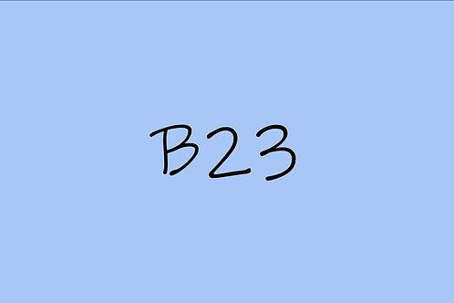 Copic CIao B23