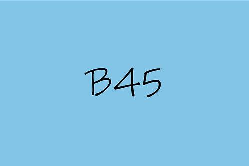Copic Ciao B45