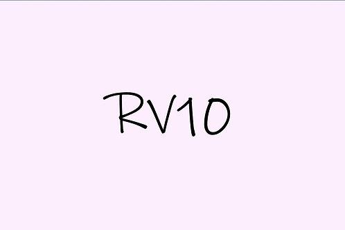 Copic Sketch RV10