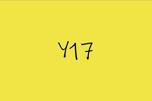 Copic Ciao Y17