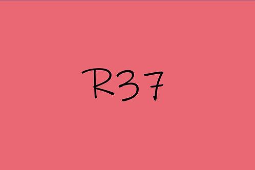 Copic Ciao R37