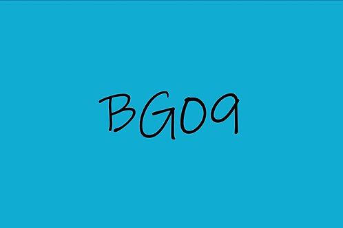 Copic Sketch BG09