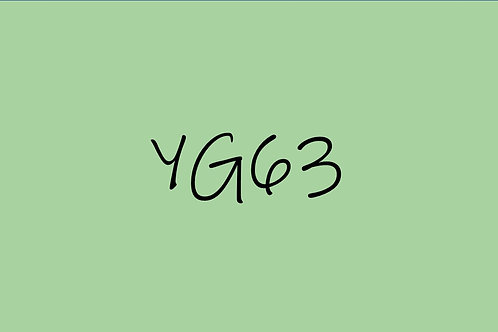 Copic Sketch YG63