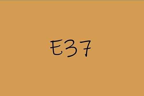 Copic CIao E37