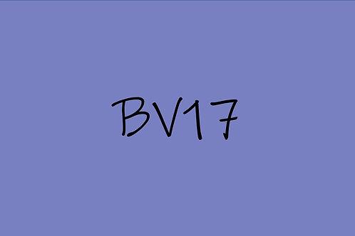 Copic Sketch BV17