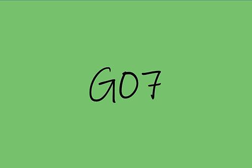 Copic Sketch G07