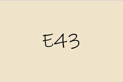 Copic Ciao E43