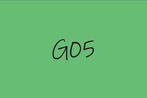 Copic Ciao G05