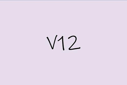 Copic Ciao V12