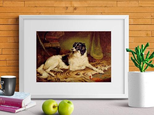 Edgar Hunt, cachorro, animais, quadro, poster, replica, gravura, reprodução, canvas, tela,rural, fazenda, sitio, chácara