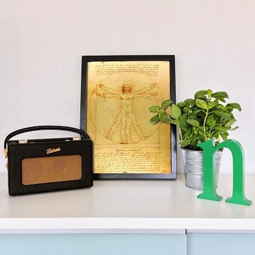leonardo da vinci, Homem Vitruviano, quadro, poster, replica, canvas, gravura, reprodução, tela, releitura, cópia