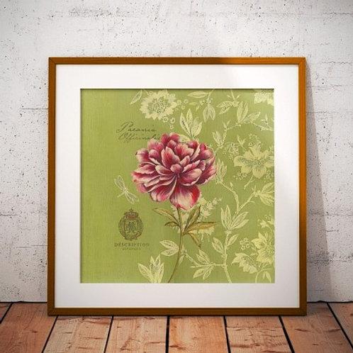 quadro de flores, gravura de flores, poster flores,peônia,tela decorativa, quadro, poster, gravura, reprodução,canvas,replica
