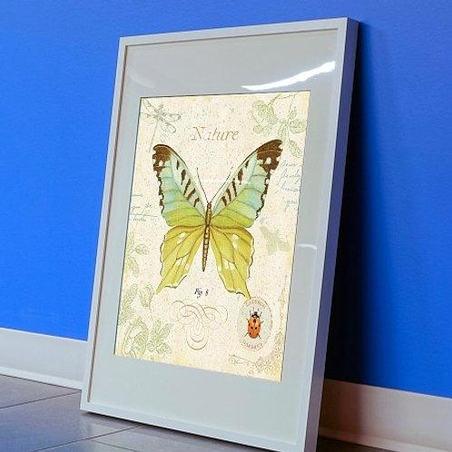 Quadro borboleta, poster borboleta, gravura borboleta, tela decorativa, quadro, poster, gravura, reprodução, canvas, replica
