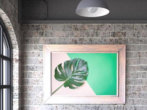 fotografia,costela de adão,botânica,folhagem,folha,quadro,canvas,poster,replica,gravura,reprodução,fototela,tela,pintura
