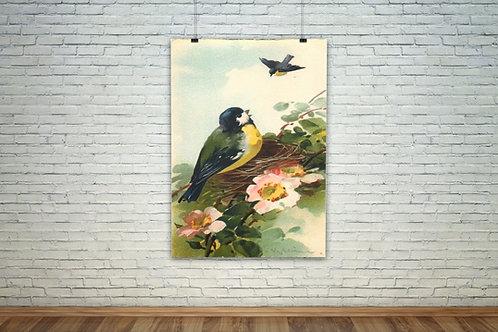 Pássaro no Ninho,decorativo,sala,estar,jantar,quadro decorativo,quadro,poster,gravura,canvas,replica,reprodução,fototela