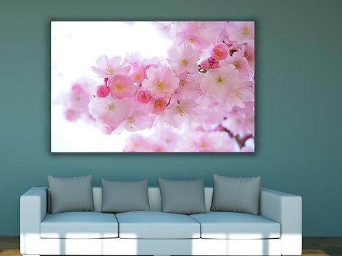 Flores,Galho de Cerejeira,fotografia,poster,gravura,reprodução,réplica,canvas,tela,pintura,fine art