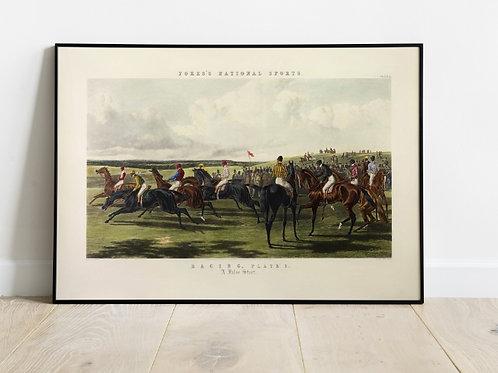 John Frederick Herring, A False Start, cavalos, jockey, quadro, poster, gravura, canvas, tela, réplica, reprodução, fototela