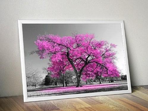 quadro, Fotografia, Árvore Rosa, preto e branco, paisagem, mercado livre, poster, canvas, barato, moderno, sala, quarto
