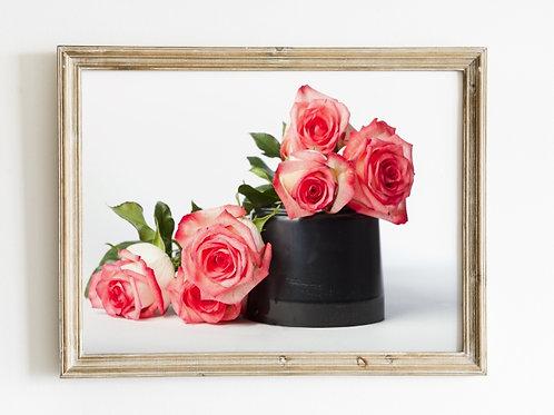 Flores,Rosas,Bicolor,Vaso,Buquê,fotografia,poster,gravura,reprodução,réplica,canvas,tela,pintura,fine art