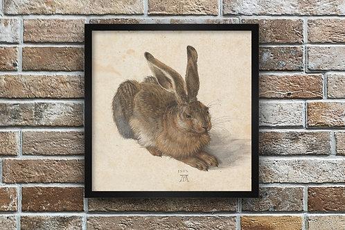 Albrecht Dürer,Lebre,coelho,aquarela,quadro,poster,replica,gravura,reprodução, canvas, fototela,cópia,tela,pintura,fine art