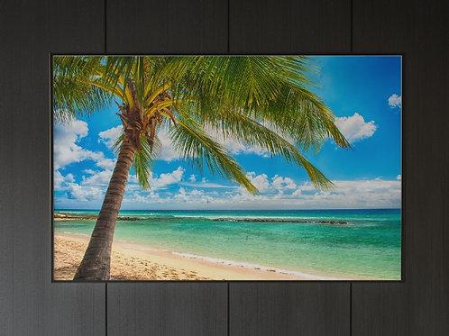 céu azul,praia,Mar,palmeira,fotografia,quadro,canvas,poster,replica,gravura,reprodução,fototela,tel