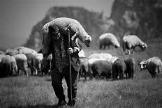 Psalm 28:7-8 Be Their Shepherd And Carry Them Forever