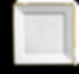 Plate - Square w_ Metallic Rim (c) (+).p
