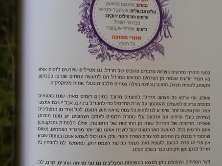 ליקוט צמחים בארץ ישראל: מדריך מעשי - פרק לדוגמה