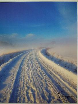 [Image description: A photo of a snowy landscape by Saga Photography.]