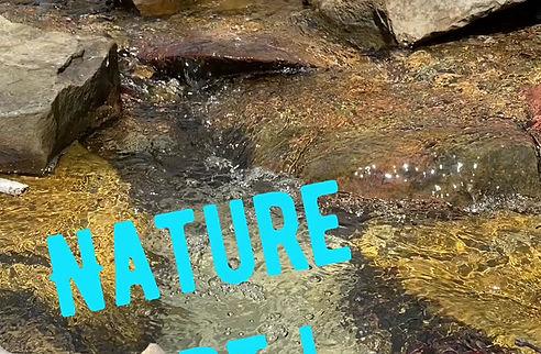 Nature Art!