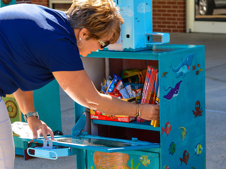 6/30 Little Free Libraries and News Racks