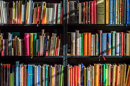 [Image description: An image of a bookshelf from a little free library.]