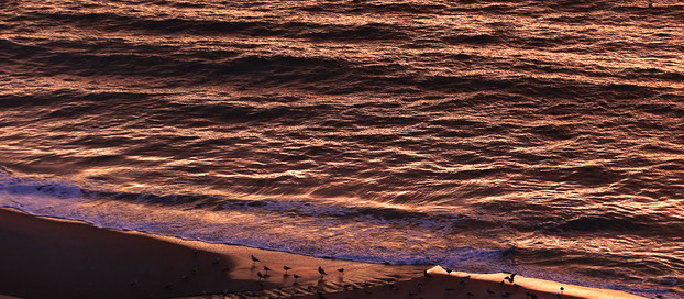 The Light in Myrtle Beach