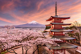 Japan Tour Packages - Pakej Jepun.jpg