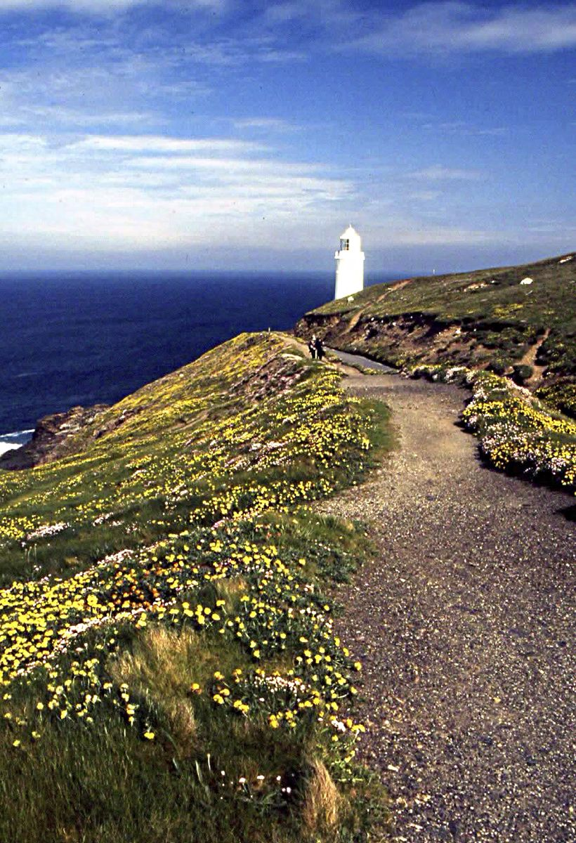 Path Leading to Trevose Lighthouse - Ray