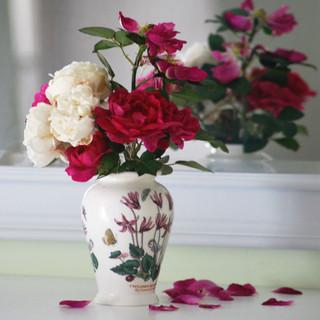 Around the house -  Winner Rose reflecti