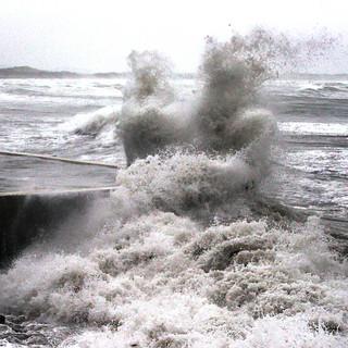Irish Wave Dancers - Victor.jpg